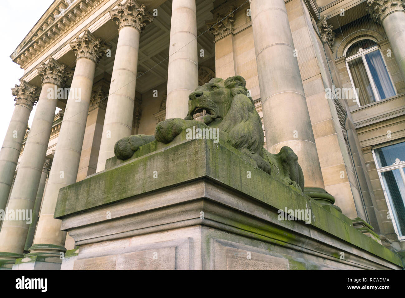 The lion statue in front of the Bolton Town Hall in England. - Stock Image