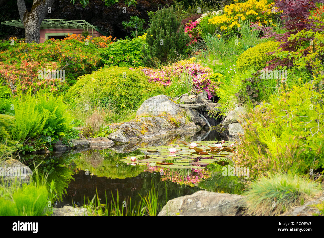 A view of the Summerhouse and lotus pond in the brilliant Abkhazi Garden (Abkhazi Gardens) during the spring in Victoria, British Columbia, Canada - Stock Image