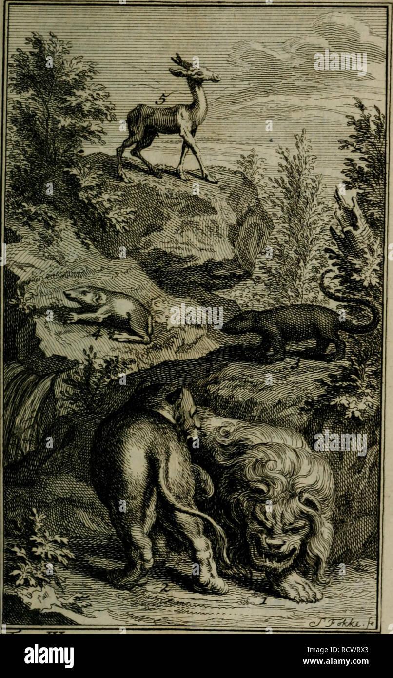 ". Description du cap de Bonne-Espérance : où l'on trouve tout ce qui concerne l'histoire naturelle du pays, la religion ... des Hottentots et l'établissement des Hollandois. Natural history; Khoikhoi (African people). l.J^ion^. Z-Lùmne^.^.JcAneimuTrv.^. ChcAort deJ^ya-.^. deyreuil.. ""Terrv-JT-^-pctç- .^. Please note that these images are extracted from scanned page images that may have been digitally enhanced for readability - coloration and appearance of these illustrations may not perfectly resemble the original work.. Kolb, Peter, 1675-1726. Amsterdam : J. Catuffe - Stock Image"