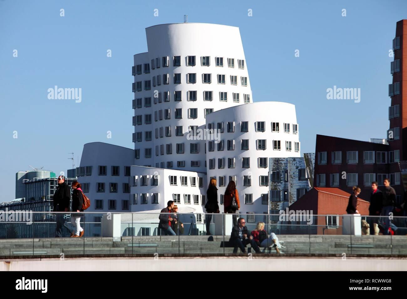 Neuer Zollhof, Gehry-Bauten, Architekt Frank O. Gehry im Medienhafen, Duesseldorf, Rheinland, Nordrhein-Westfalen, Deutschland - Stock Image