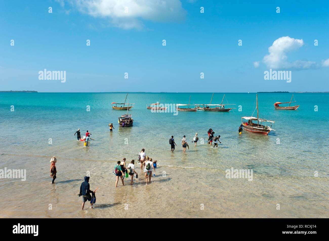 Tourists wade through the shallow water to boats, Menai Conservation Area, Zanzibar, Tanzania - Stock Image