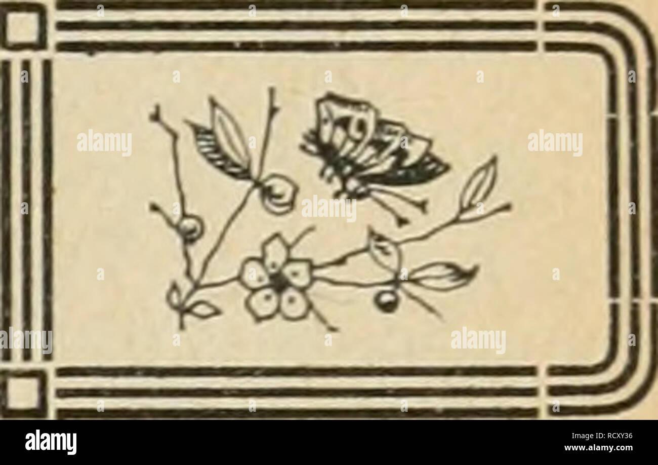 . Der Ornithologische Beobachter. Birds; Birds. NATURSCHUTZ. Protection de la nature.. Ein neues Sfatnrschatzgesetz hat Preussen als Polizeiverordnung unter dem 30. Mai 1921 veröffentlicht. Besonders belangreich ist darin die Liste der ge- schützten Tiere, die in mancher Beziehung erweitert worden ist. Von den Insekten flnden sich darin nur zwei Vertreter: der Apollofalter und die Gottesanbeterin. Von Vögeln sind das ganze Jahr geschützt; Kormoran, Schwarzer und Weisser S4orch, Höckerschwan, Zwergtrappe, Reiher und Rohrdommeln (mit einziger Ausnahme des Fischreihers), Schlangenadler, Schreiadl Stock Photo