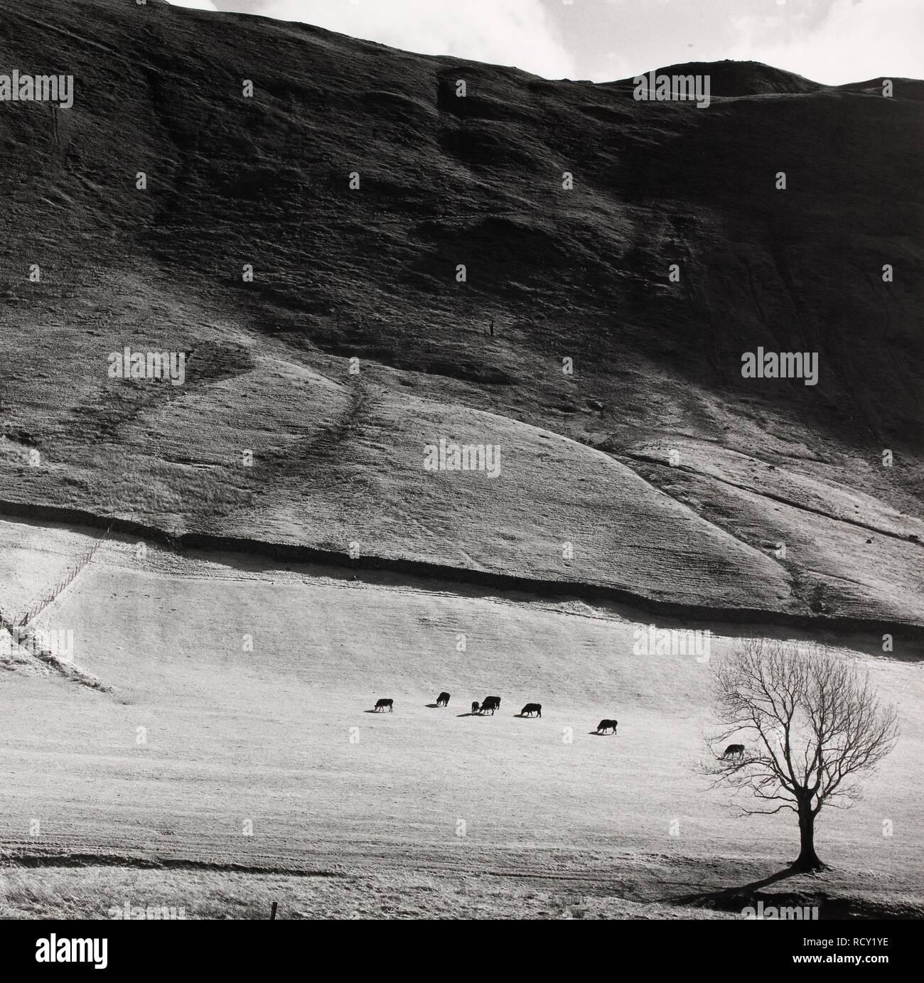 Boardale; Cumbria 1982. Monochrome. Source: FG5294-6. Stock Photo