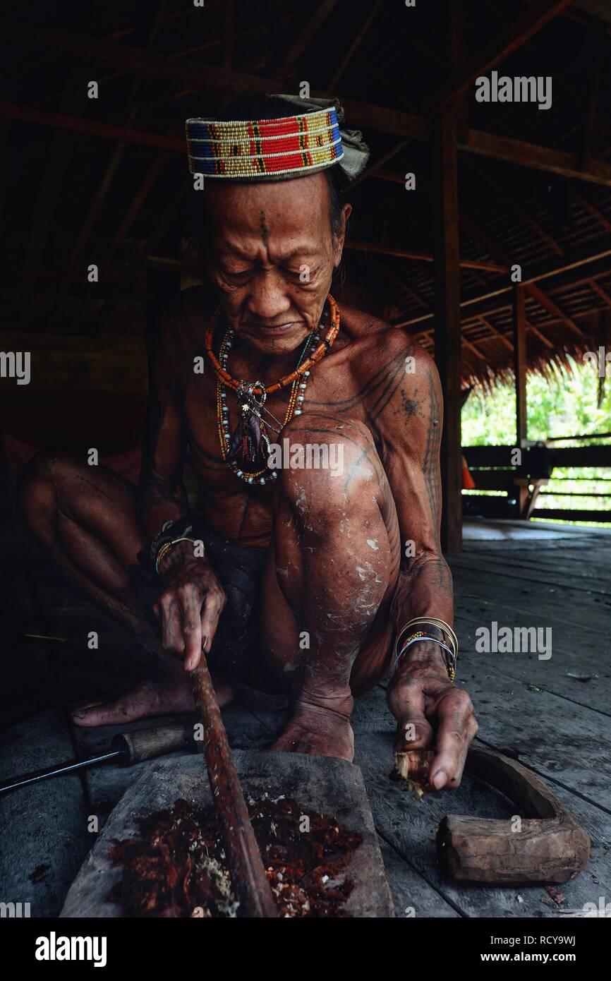 Muara Siberut, Mentawai Islands / Indonesia - Aug 15 2017: Tribal elder Toikot preparing poison at his rainforest home - Stock Image