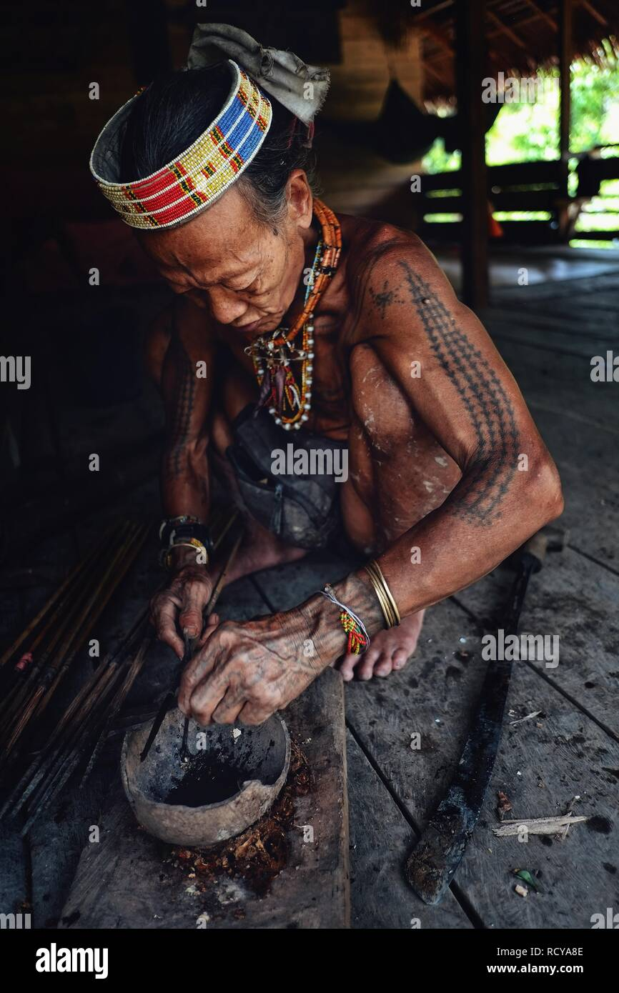 Muara Siberut, Mentawai Islands / Indonesia - Aug 15 2017: Tribal elder Toikot poisoning arrowheads for hunting at his jungle home - Stock Image