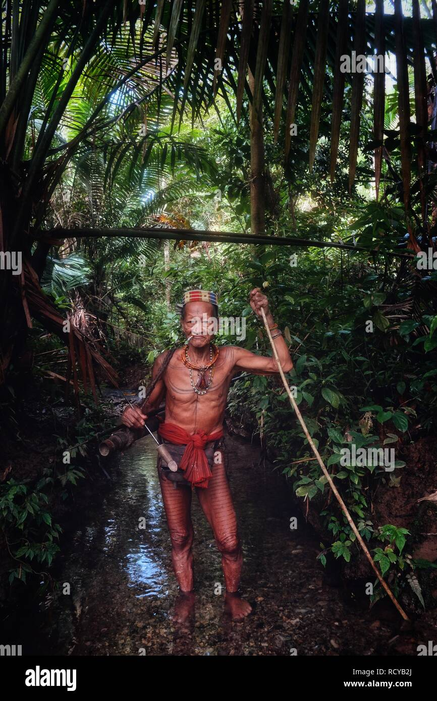 Muara Siberut, Mentawai Islands / Indonesia - Aug 15 2017: Tribal hunter Toikot on a hunting trip for monkeys in the middle of a stream deep in the ju - Stock Image
