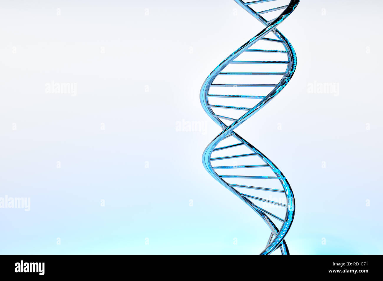 DNA double helix, blue glossy material, white gradient background - Stock Image