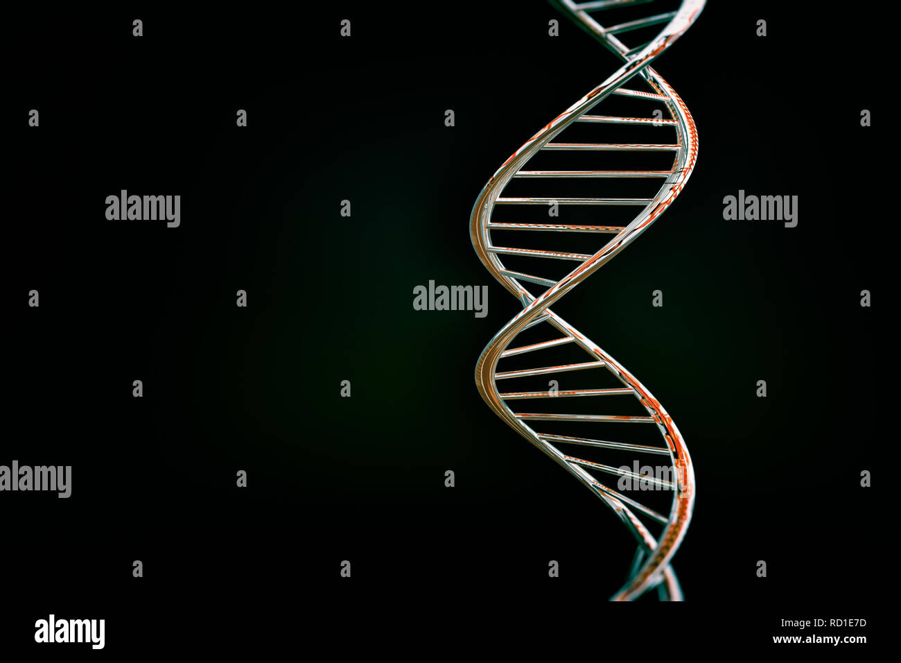 DNA double helix, red glossy material, dark background - Stock Image