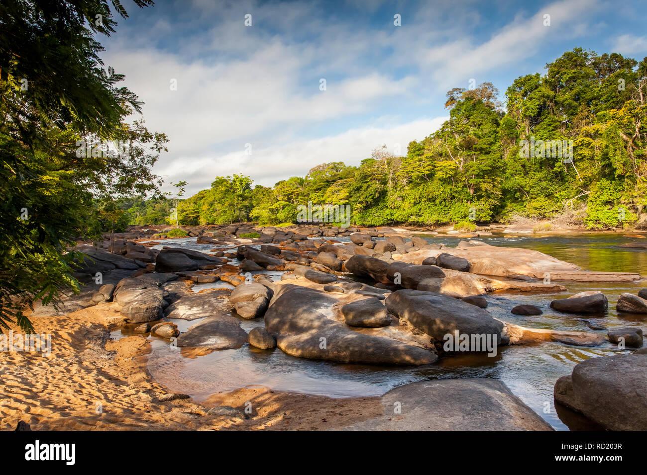 View on the Suriname river in Upper Suriname, Awarradam jungle camp - Stock Image