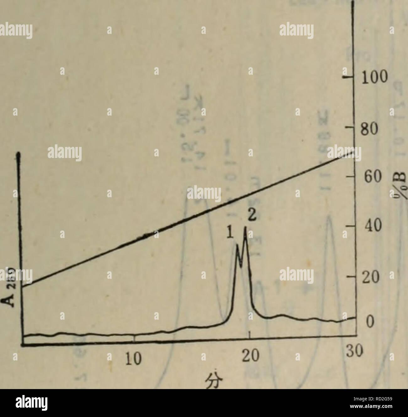 """. dan bai zhi shun xu fen xi ji shu. botany. æãèç½è´¨æ¯ç¨SDSåè¶çµæ³³é´å®ã ç»æè§å¾10-8ä¸è¡¨10-12ã ä¾6:天è±ç²èç½å¨Protein 1-125æ±ä¸å离ã2^0 æ ·åï¼å¤©è±ç²èç½10^*1è² ç´ ç²é ¸æº¶æ¶²ï¼å«é20pg/^) å¡«å æ±ï¼Protein 1-125æ± 7.6mm(ID) X 30cm 移å¨ç¸ï¼6mol/lè²ç´ ï¼0.2 mol/1ç²é ¸æº¶æ¶²ã çæµæ³¢é¿ï¼280rnn ç»æè§å¾10-9ã ä¾7:åç¸é«æ液ç¸è²è°± Xr^fl^^^ o å¾10_9天è±ç²èç½å¨Protein 1-125æ±ä¸å离 仪å¨ï¼Waterså ¬å¸äº§åï¼ ç±6000Aå溶åè¾åºç³»ç»ã660åæ´è±ç¨åºåUSK注å°å¨ç»æ,é æ440åç´«å¤å¸æ¶ æ£æµä»ªã420åè§å æ£æµä»ªåOmmiscribeåéè®°å½ä»ªï¼Houston Instrument)Â« è²è°±æ±ï¼Watersç产ç^* Bondapak C""""åç¸æ±,å å¾3.9inmï¼é¿30cm - Stock Image"""