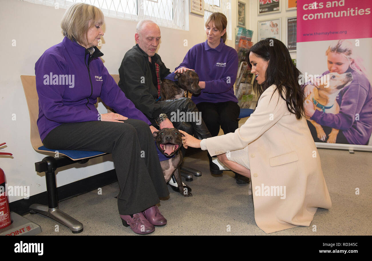 The Duchess of Sussex meets Wully Struthers and his staffies Azzy and Gallis during a visit to Mayhew, an animal welfare charity she is now supporting as patron, at its offices in north-west London. - Stock Image