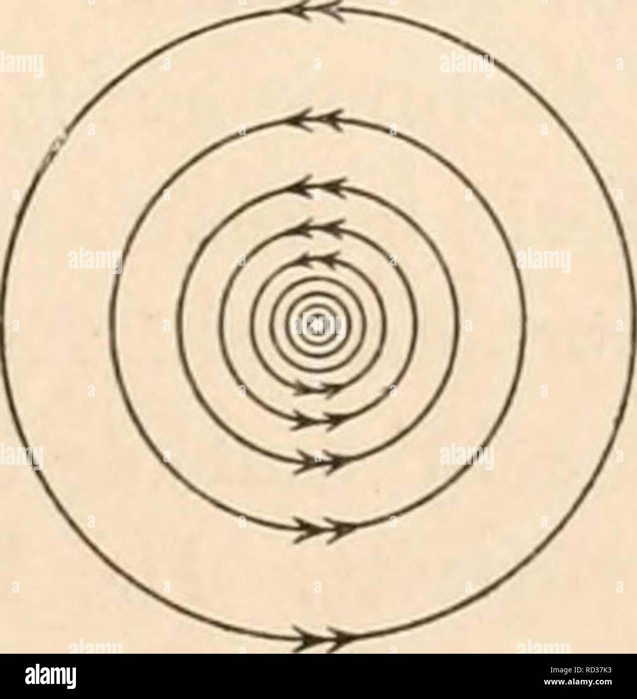 . Elektrophysiologie menschlicher Muskeln. Electrophysiology. Abb. 7. Abb. 7 a. Abb. 7 und 7a. Kraftlinien des permanenten Magneten, wie in Abb. 6. Konzentrische Kraftlinien- ringe um den Stromleiter haben aber Gegenuhrzeiger (vgl. Abb. 7a), weil die Stromriehtung umgekehrt wie in Abb. 6 angenommen ist. Ablenkung des Stromleiters in Richtung des Pfeiles (nach oben in der Abb. 6). teten Kraftlinien, ihr Querdruck nimmt dementsprechend zu und es entsteht die Tendenz, den Stromleiter quer zur Richtung der Krafthnien (in Abb. 6 nach unten) in Bewegung zu setzen. Auf der andern Seite des Stromleite Stock Photo