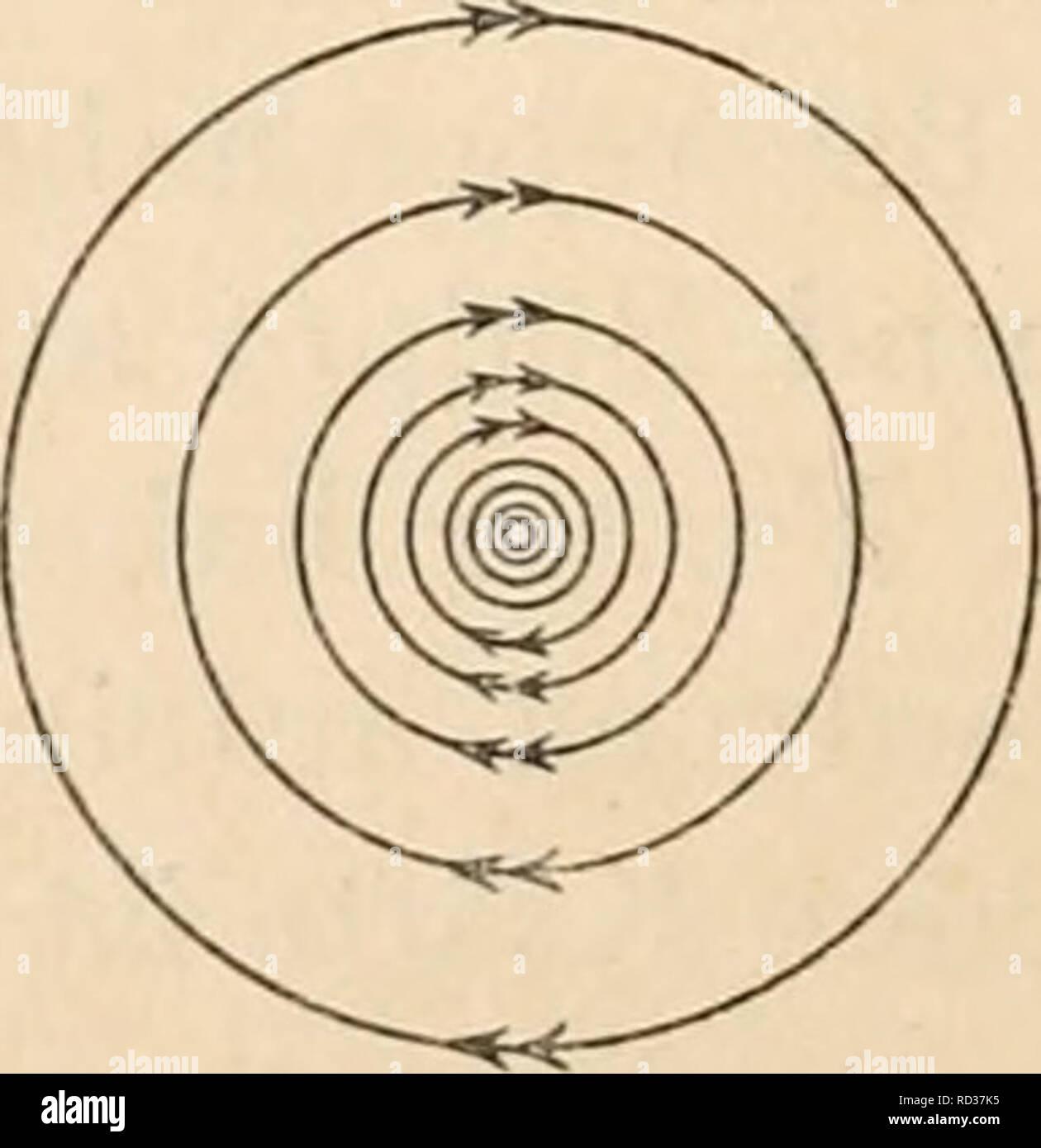 . Elektrophysiologie menschlicher Muskeln. Electrophysiology. i. Abb. 6. Abb. 6 a. Abb. 6 und 6a. l'rinzip des Saitengalvauometers durch Kraftlinienschema dargestellt. Kraftlinien des permanenten Magneten punktiert gezeichnet, Richtungssinn von linl<s (Nordpol) nach reclits (Südpol). Konzentrische Kraftlinienringe um den im Querschnitt getroffenen Stromleiter ausgezogen gezeichnet, Uhrzeigersinn wie in Fig. 6a. Ablenkung des Stromleiters in Richtung des Pfeiles (nach unten in der Abb. 6). mit dem radialen Abstand von dem Stromleiter abnimmt. Auch hier haben die Linien einen bestimmten Richt Stock Photo
