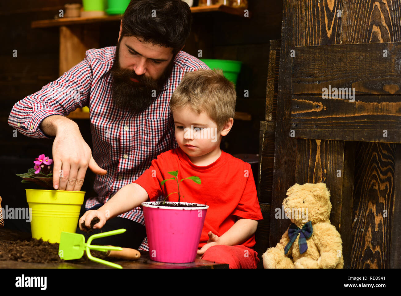Father and son. Flower care watering. Soil fertilizers. bearded man and little boy child love nature. happy gardeners with spring flowers. Family day. Greenhouse. I have the best job in the world - Stock Image