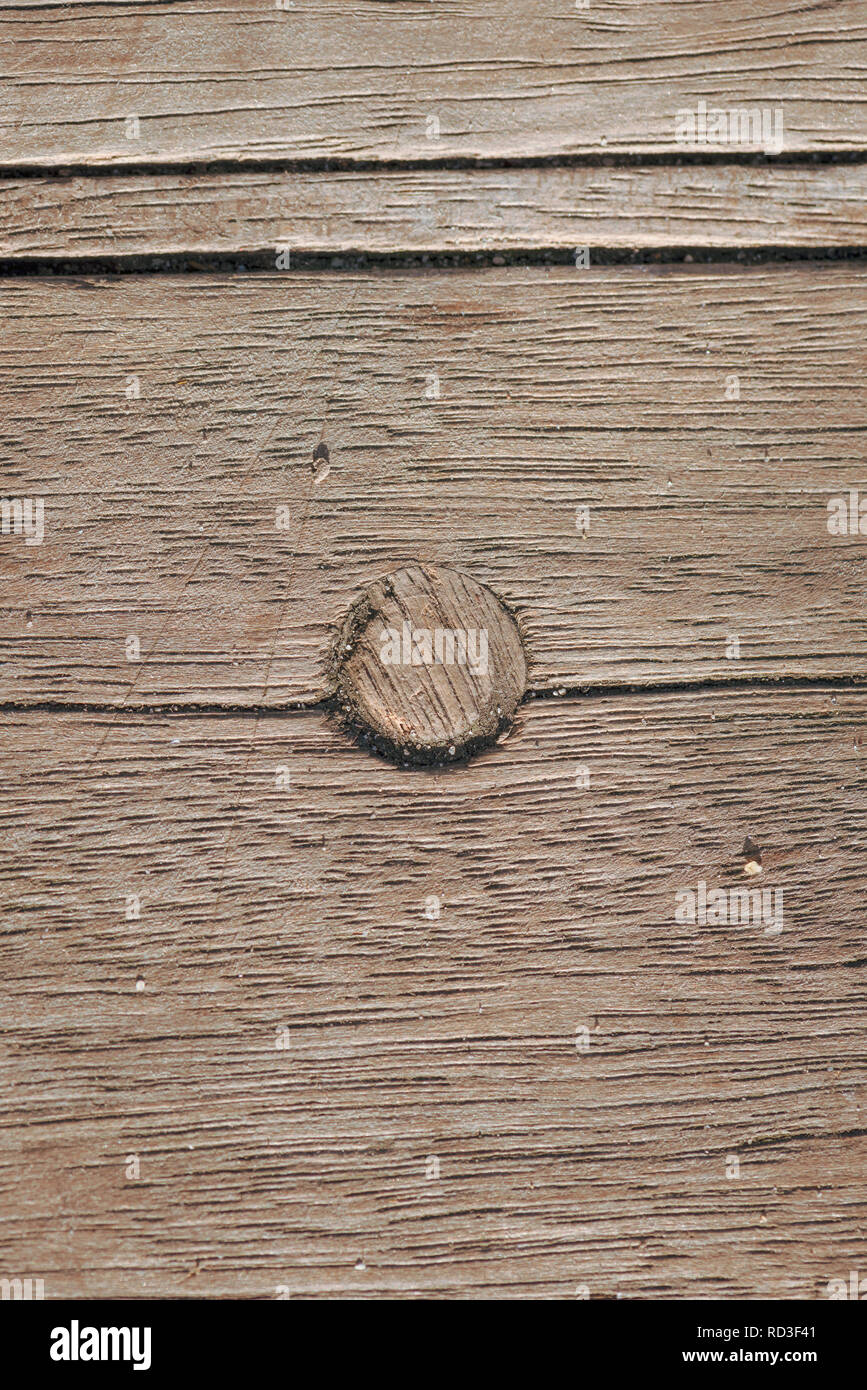 Close up of wooden dowel joint of dowel pin in wooden decking. - Stock Image