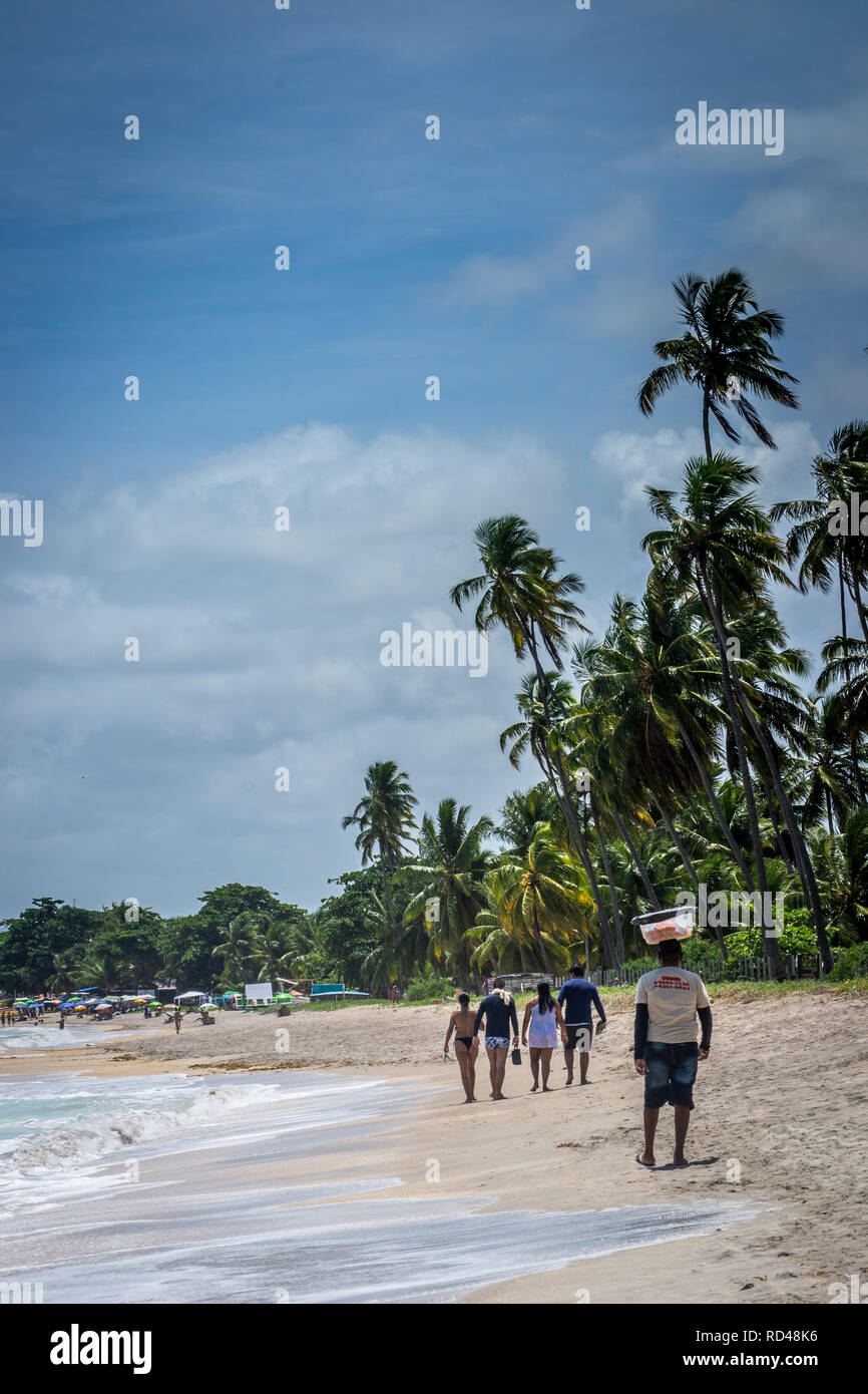 Cities of Brazil - Recife, Pernambuco state's capital - City views - Stock Image
