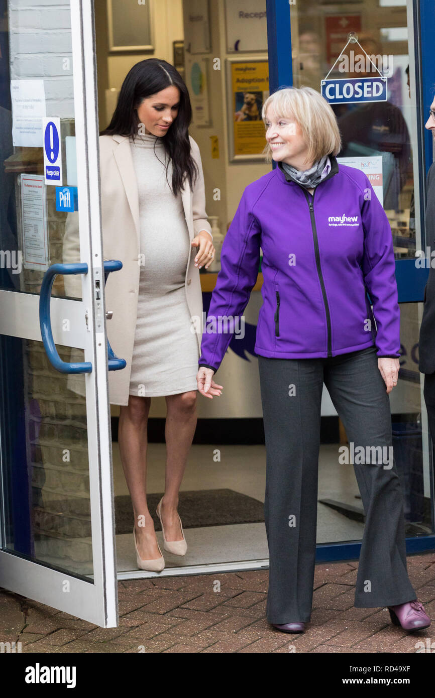 HRH, Meghan, Duchess of Sussex, who is six months pregnant, leaving The Mayhew Animal Home, This was her first visit as Patron of the charity and her second public engagement this week. Credit: Chris Aubrey/Alamy Live News - Stock Image