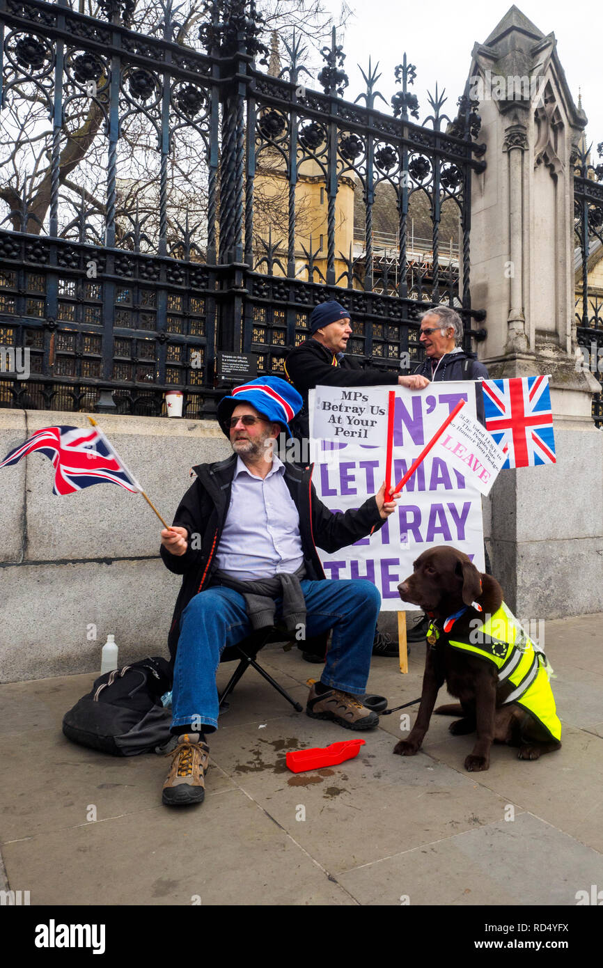 London 15 January 2019 - Leave and Remain supporters gather outside Parliament ahead of the crucial Brexit vote - London, England - Stock Image