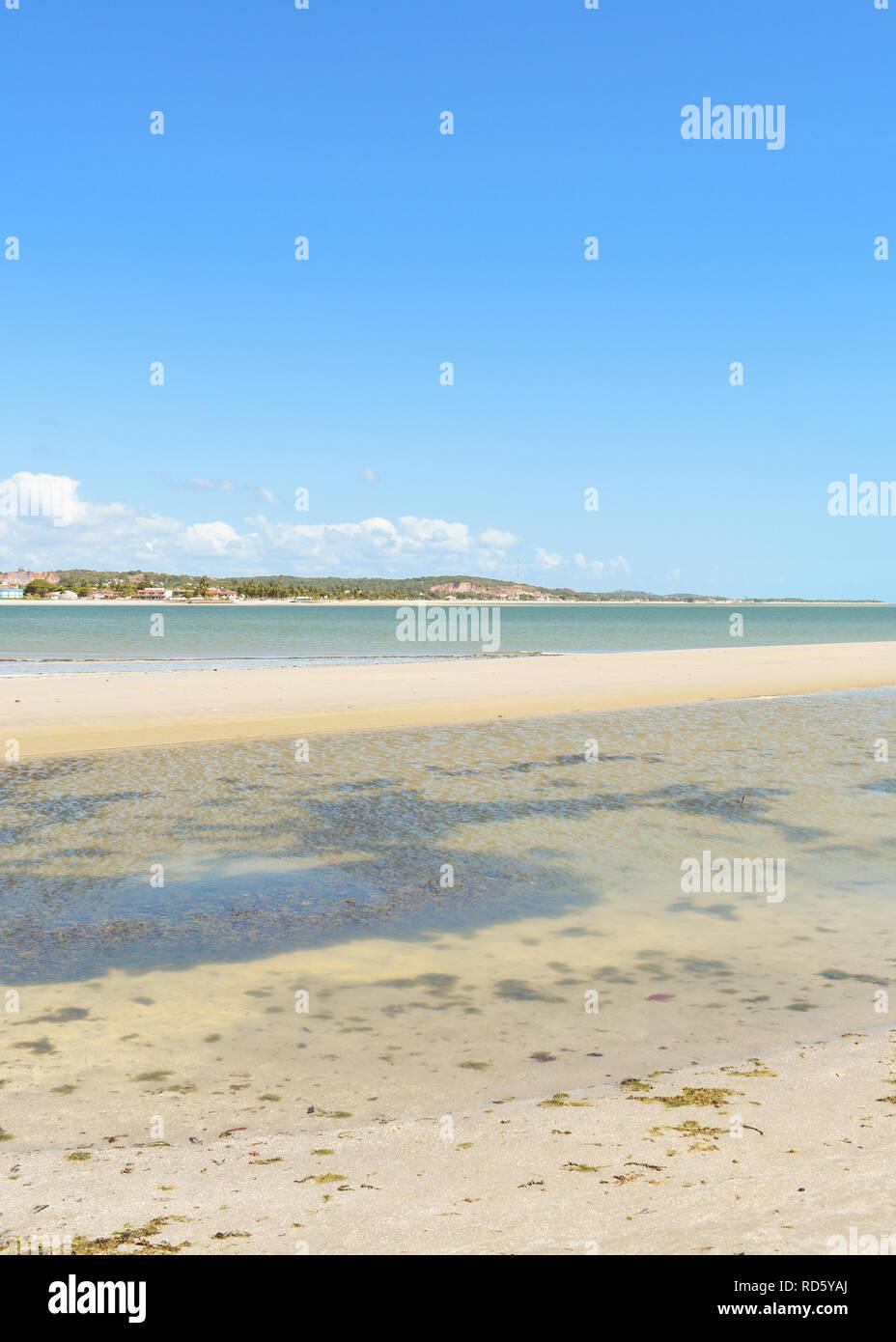 Seaweed and shallow waters on Coroa do Aviao islet - Igarassu, Pernambuco, Brazil - Stock Image