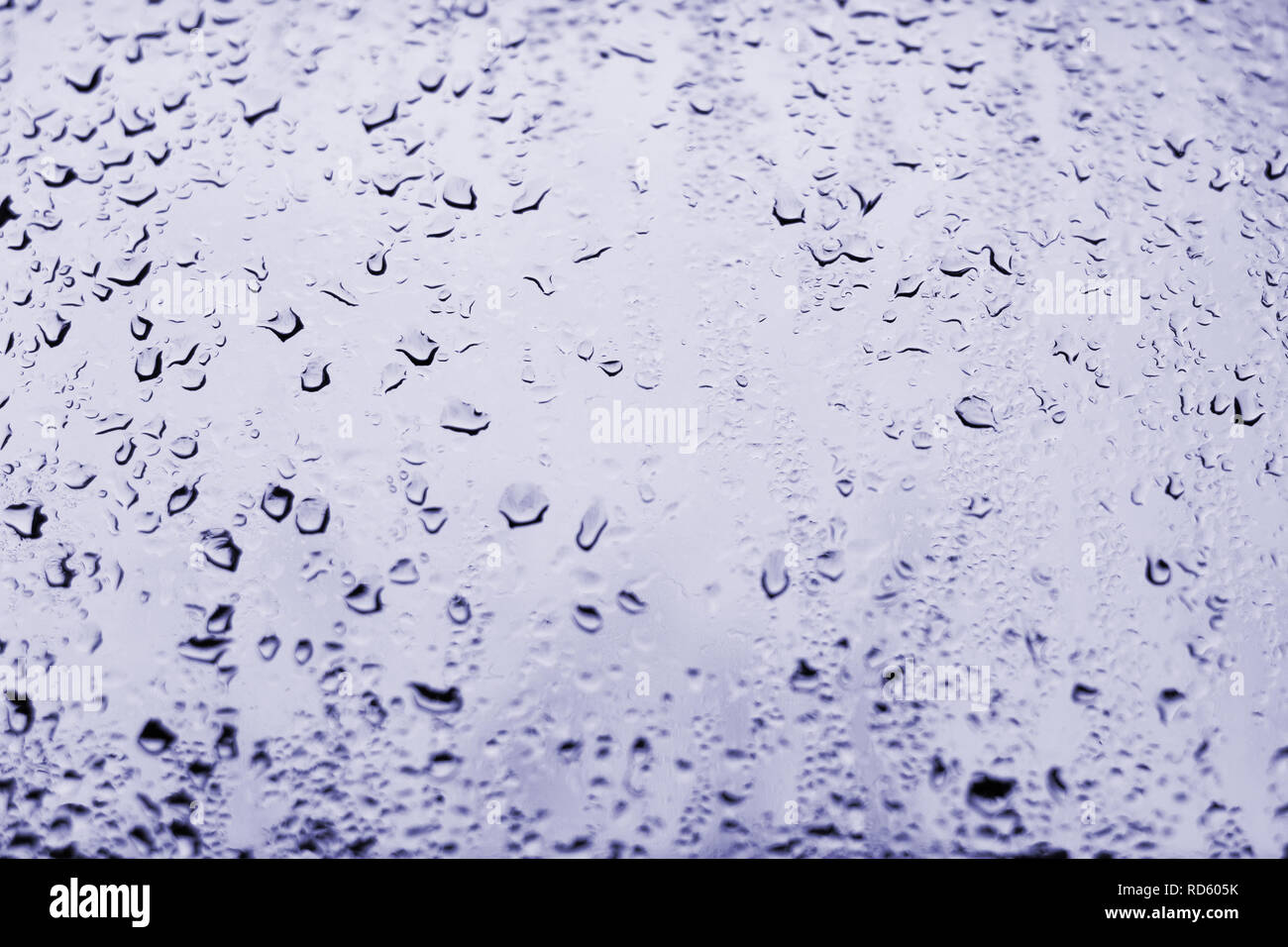 High contrast photo of drops of rain on a window glass with light pale purplish blue color Stock Photo