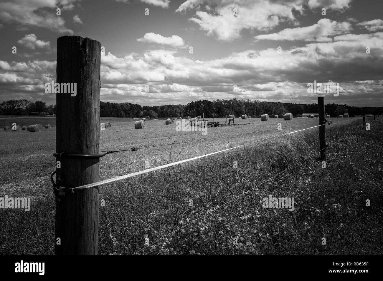 Black and white of a fence by a freshly cut winter wheat field with bales of straw scattered on the land. Raleigh, North Carolina. - Stock Image