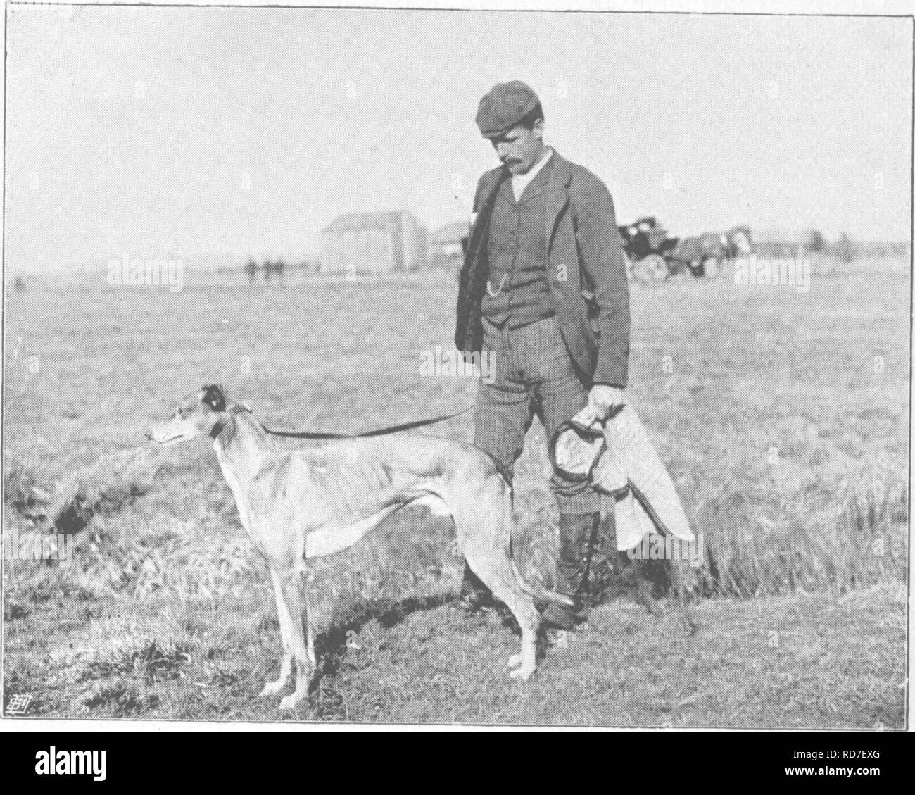 GREYHOUND 1921 WATERLOO CUP WINNER NAMED DOG OLD ORIGINAL DOG PRINT