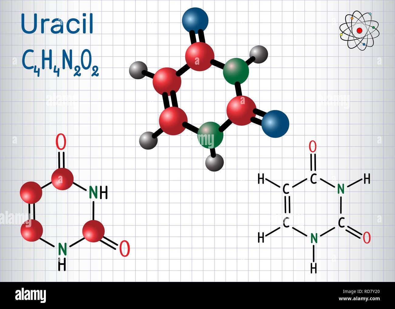 Uracil  (U) - pyrimidine  nucleobase in the nucleic acid of RNA. Structural chemical formula and molecule model. Sheet of paper in a cage. Vector illu - Stock Image