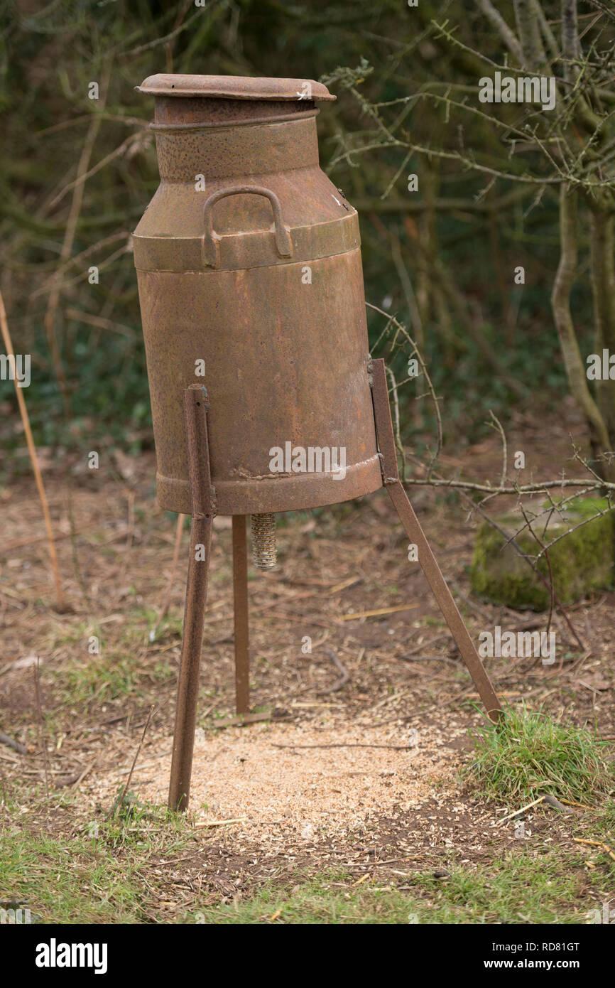 pheasant feeder - Stock Image