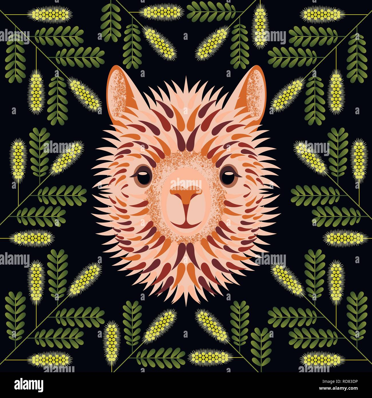 Alpaca light face, head, portrait. In the frame of the branches Honey Mesquite. Geometric style. For manufacturers and sellers of wool, yarn, fabrics, - Stock Vector