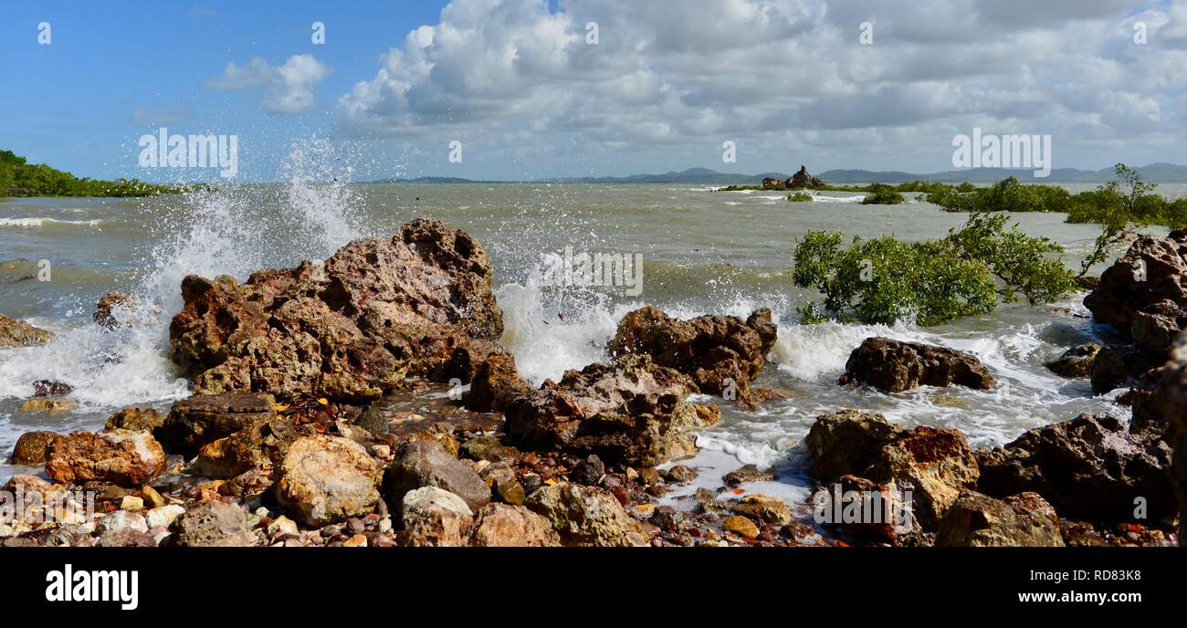 Waves crashing against rugged rocks near mangroves, Yuibera trail at Cape Hillsborough National Park, Queensland, Australia - Stock Image