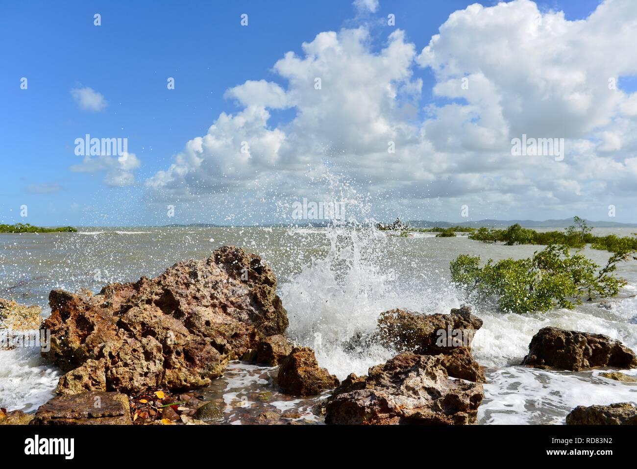 Waves crashing against rugged rocks near mangroves, Yuibera trail at Cape Hillsborough National Park, Queensland, Australia Stock Photo
