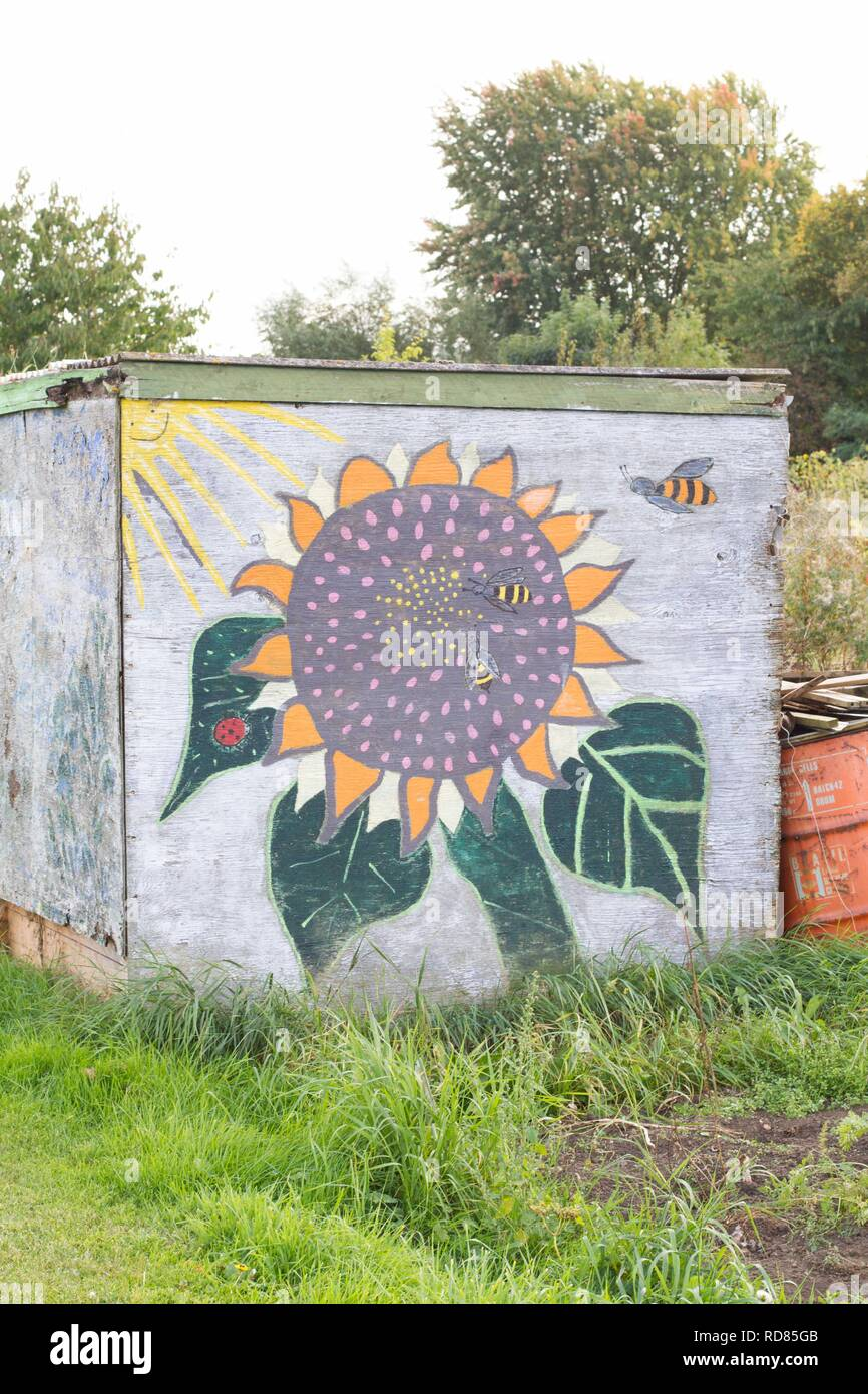 Community art of sunflowers and bees on Allotment shed in bee friendly garden. - Stock Image