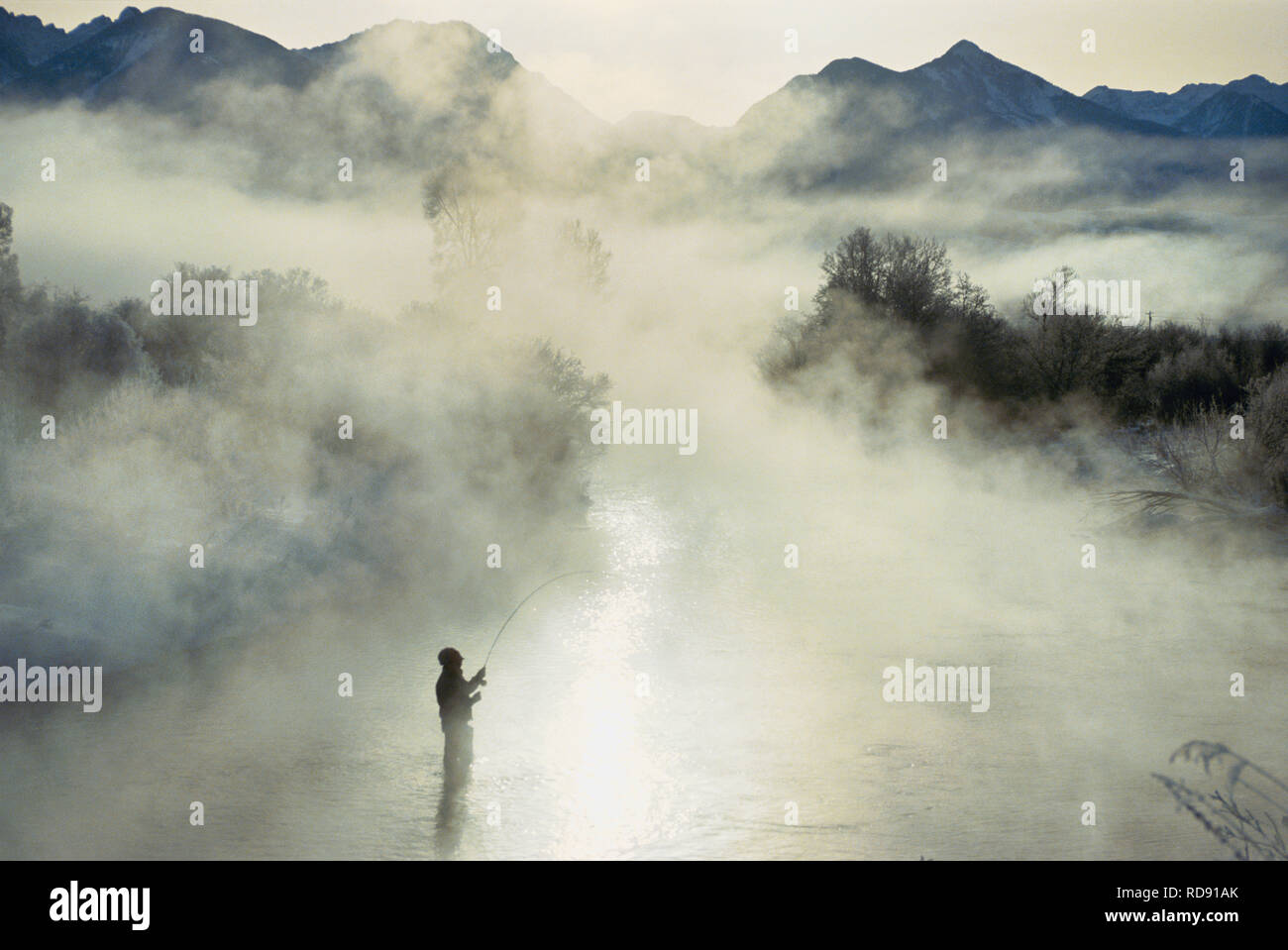 Fly Fishing in winter in Montana - Stock Image