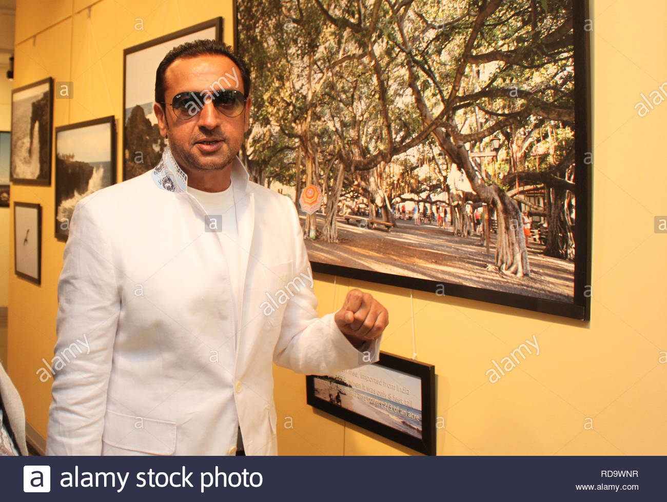Bollywood actor Gulshan Grover at the inauguration of Homeopath Dr Mukesh Batra's (not in picture) 8th annual charity photgraphy exhibition in Mumbai, India on September 13, 2012. (SOLARIS IMAGES) - Stock Image