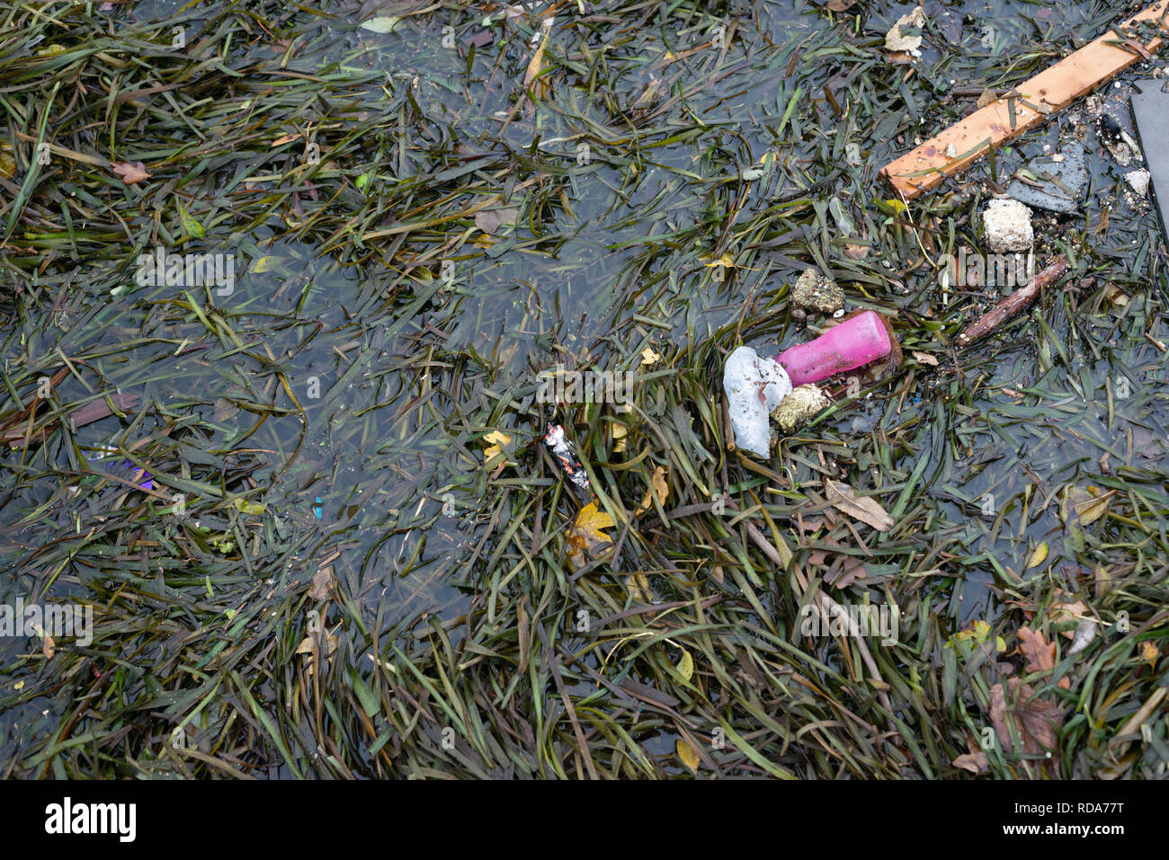 Discarded rubbish found along the River Lea in London, UK - Stock Image