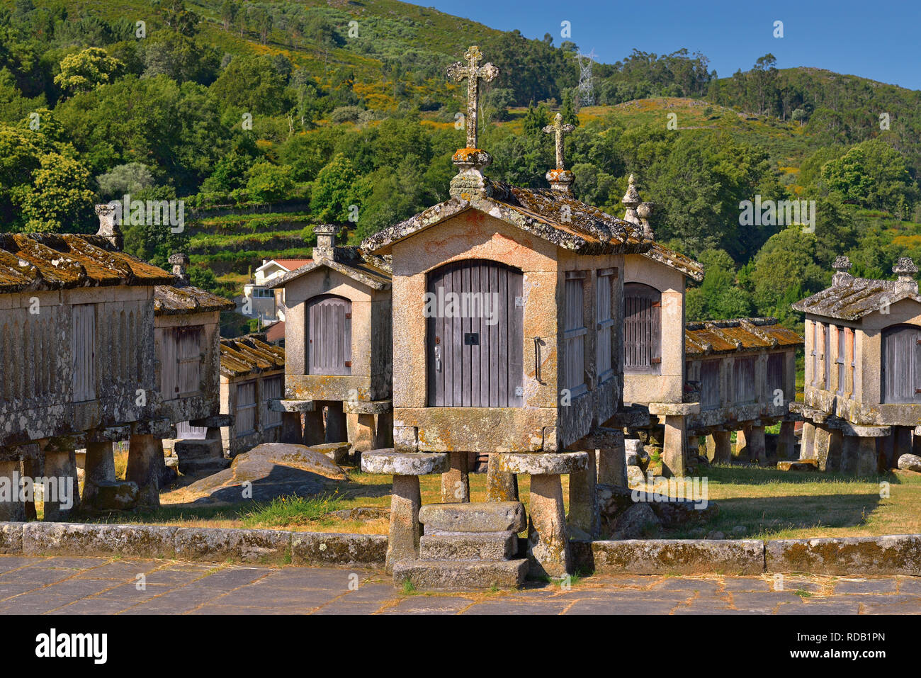 Traditional granite stone corn storages in northern Portugal - Stock Image