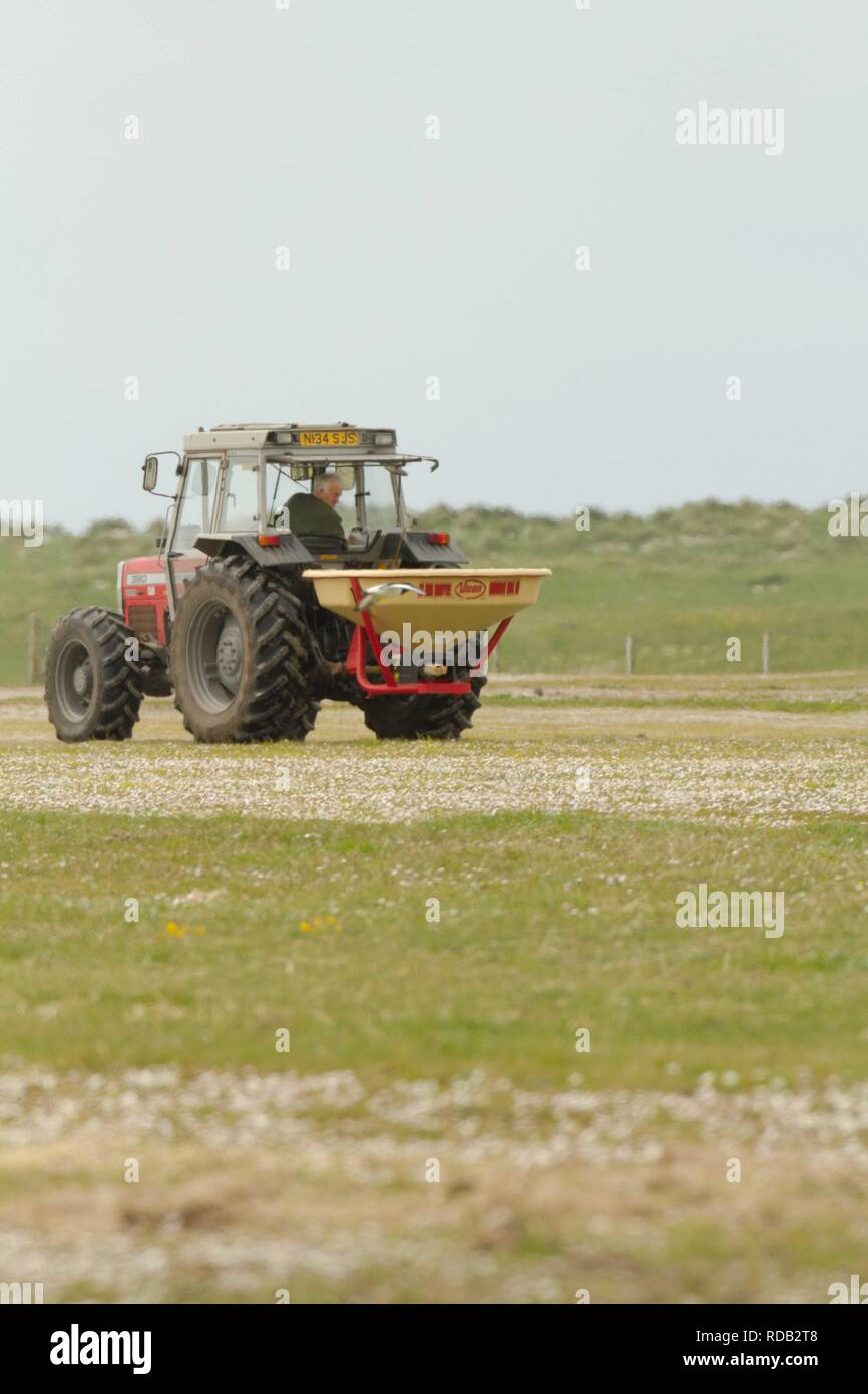 Machir being fertilized  to improve it for agricultural production by crofters, nitrogen fertilizer.Threat to bio diversity of traditional machir and its wildlife .Delimna of sustainable farming in the  Hebrides - Stock Image