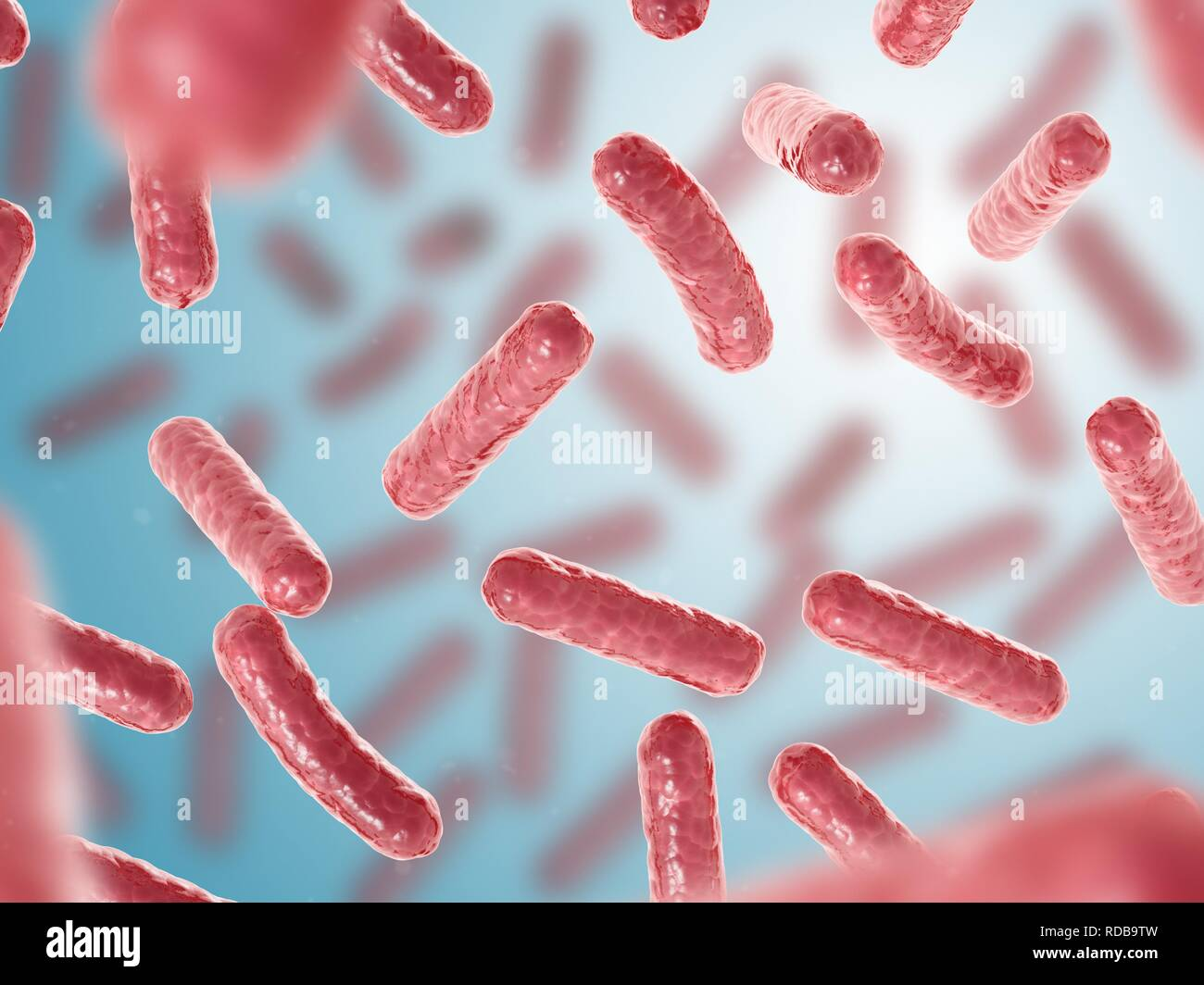 Bacteria close up - Stock Image