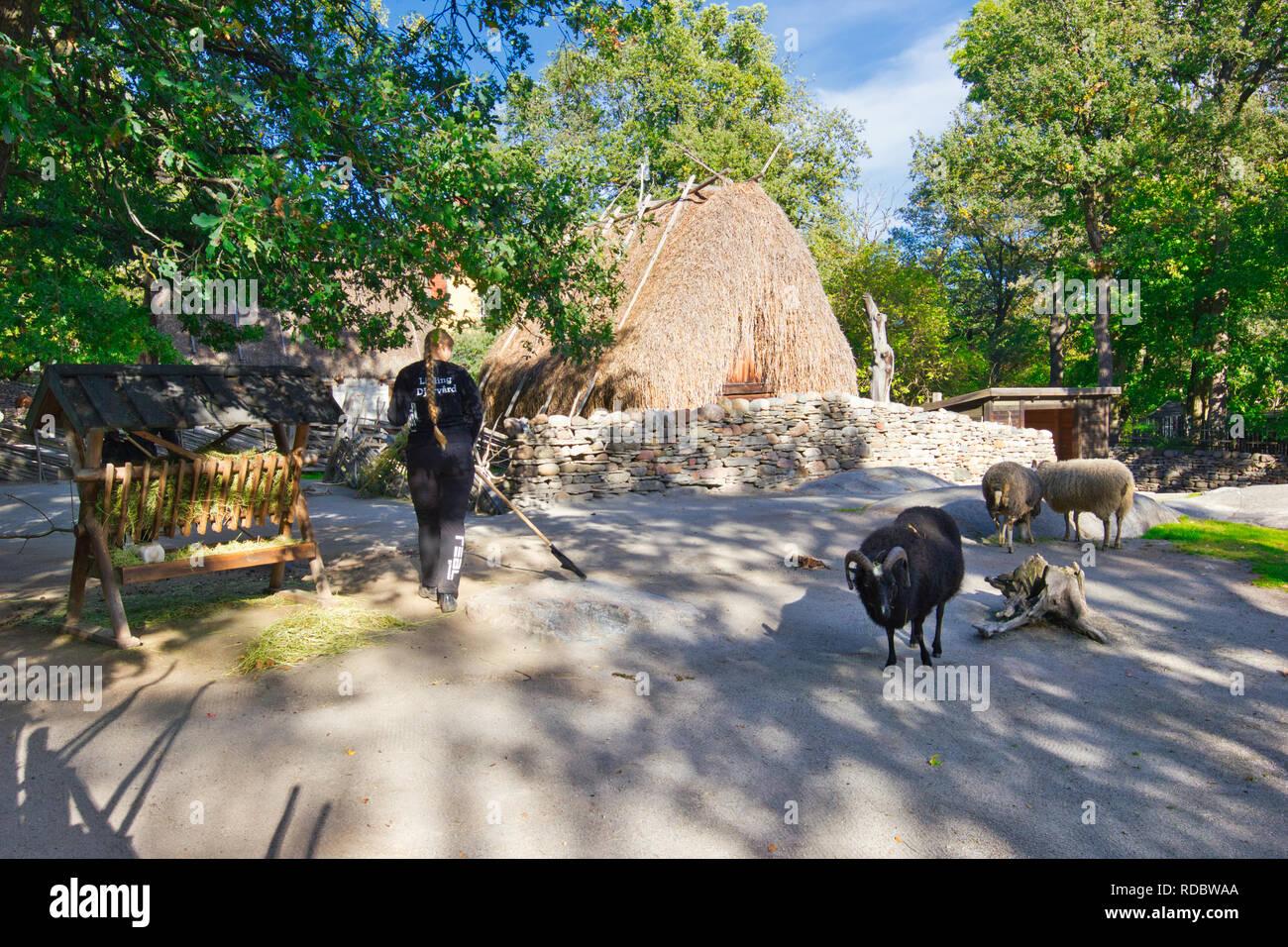 Summer Pasture Farm, Skansen open-air museum, Djurgarden, Stockholm, Sweden, Scandinavia - Stock Image