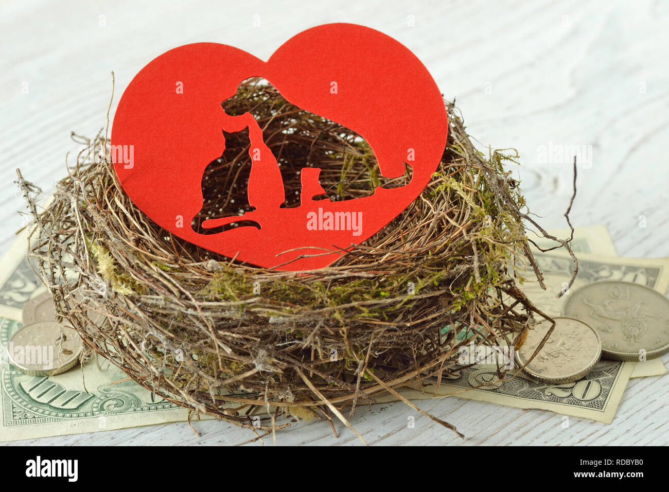 Cat and dog silhouette cut out in paper heart in a nest on money - Concept of pet shelter donations - Stock Image