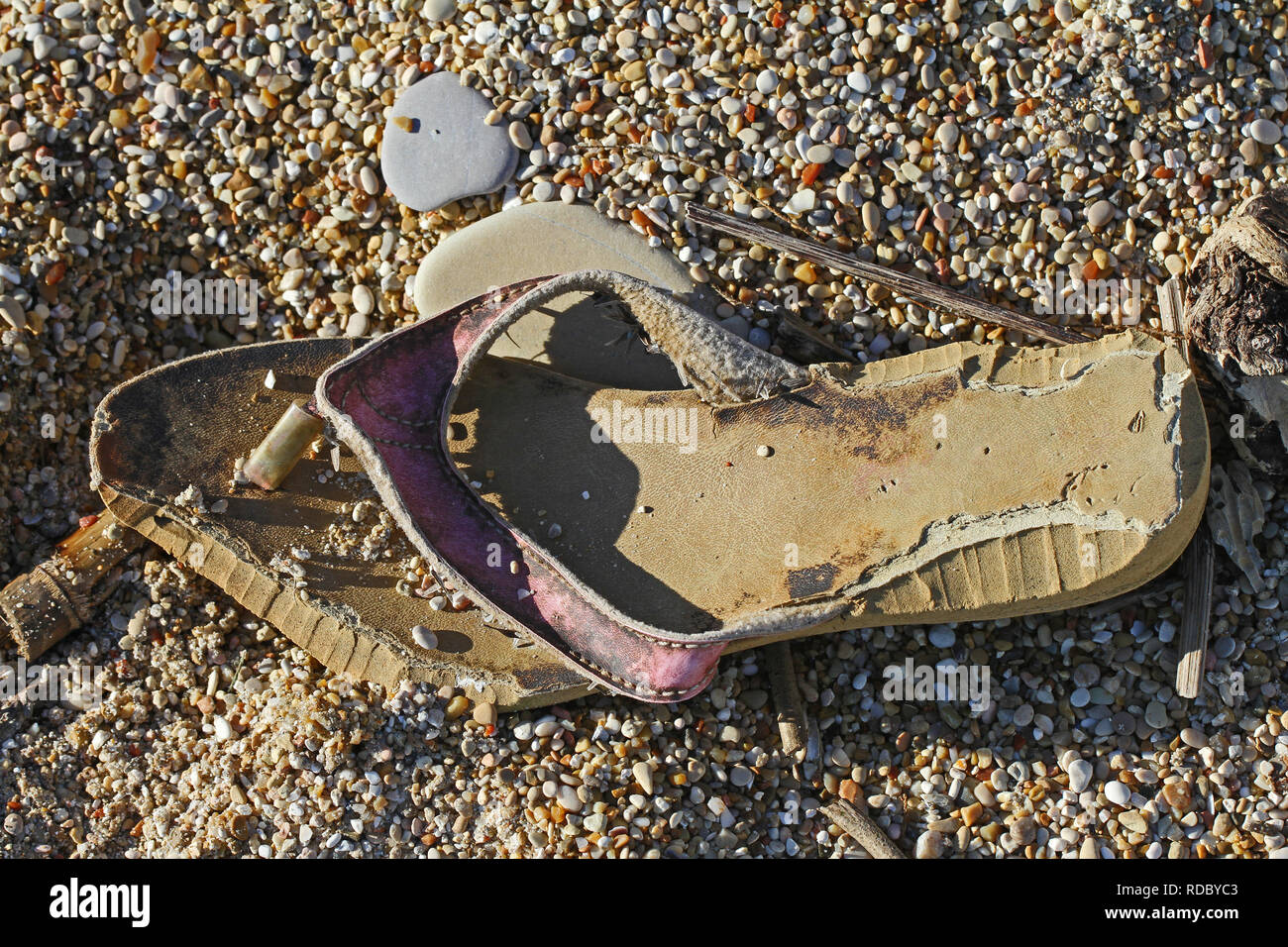 shoe flip-flop or sandal washed up on the beach in winter on the Adriatic coast near Ancona in Italy - Stock Image
