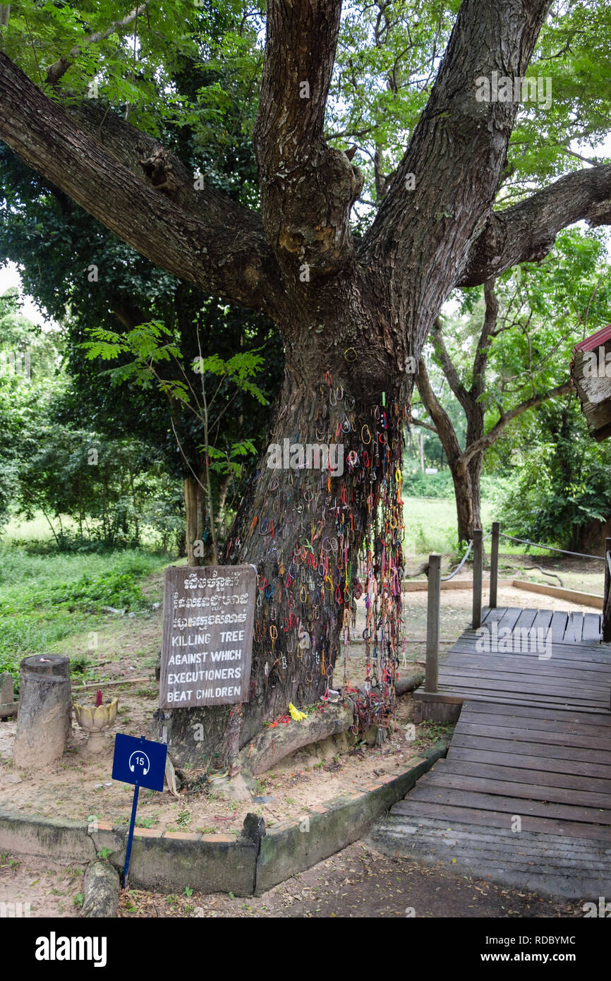 Sign for killing tree where children were beaten to death by Khmer Rouge. The Killing Fields Genocidal Centre. Choeung Ek, Phnom Penh, Cambodia, Asia - Stock Image