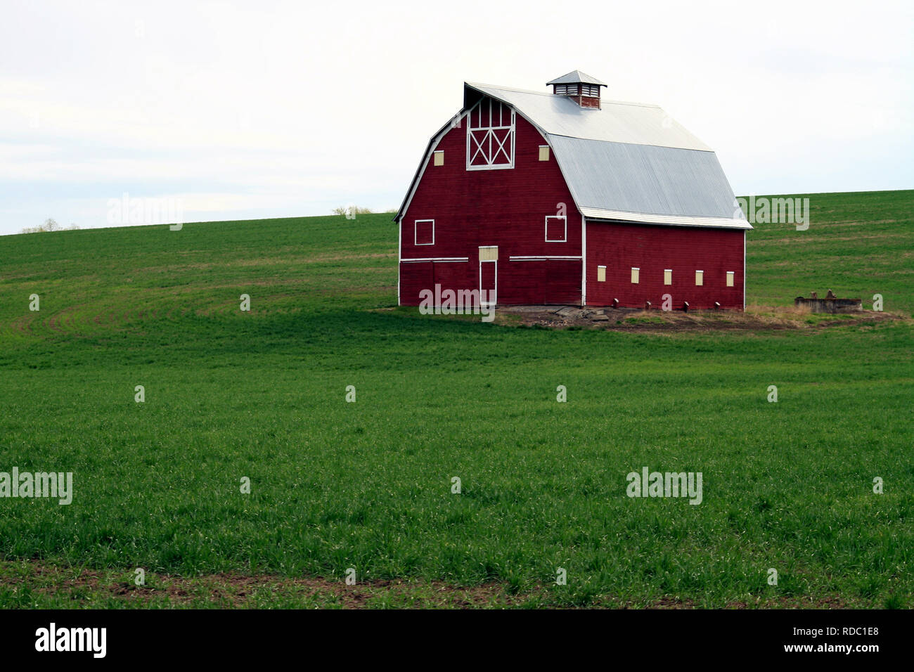 A Red Barn in the wheat field of the Palouse, Washington State, USA - Stock Image