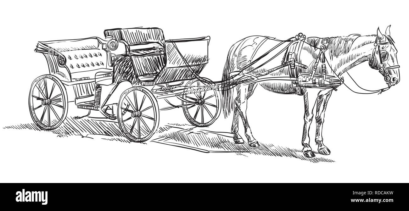 Vector Hand Drawing Illustration Horse Drawn Carriage Standing In Profile Monochrome Vector Hand Drawing Sketch Illustration In Black Color Isolated Stock Vector Image Art Alamy