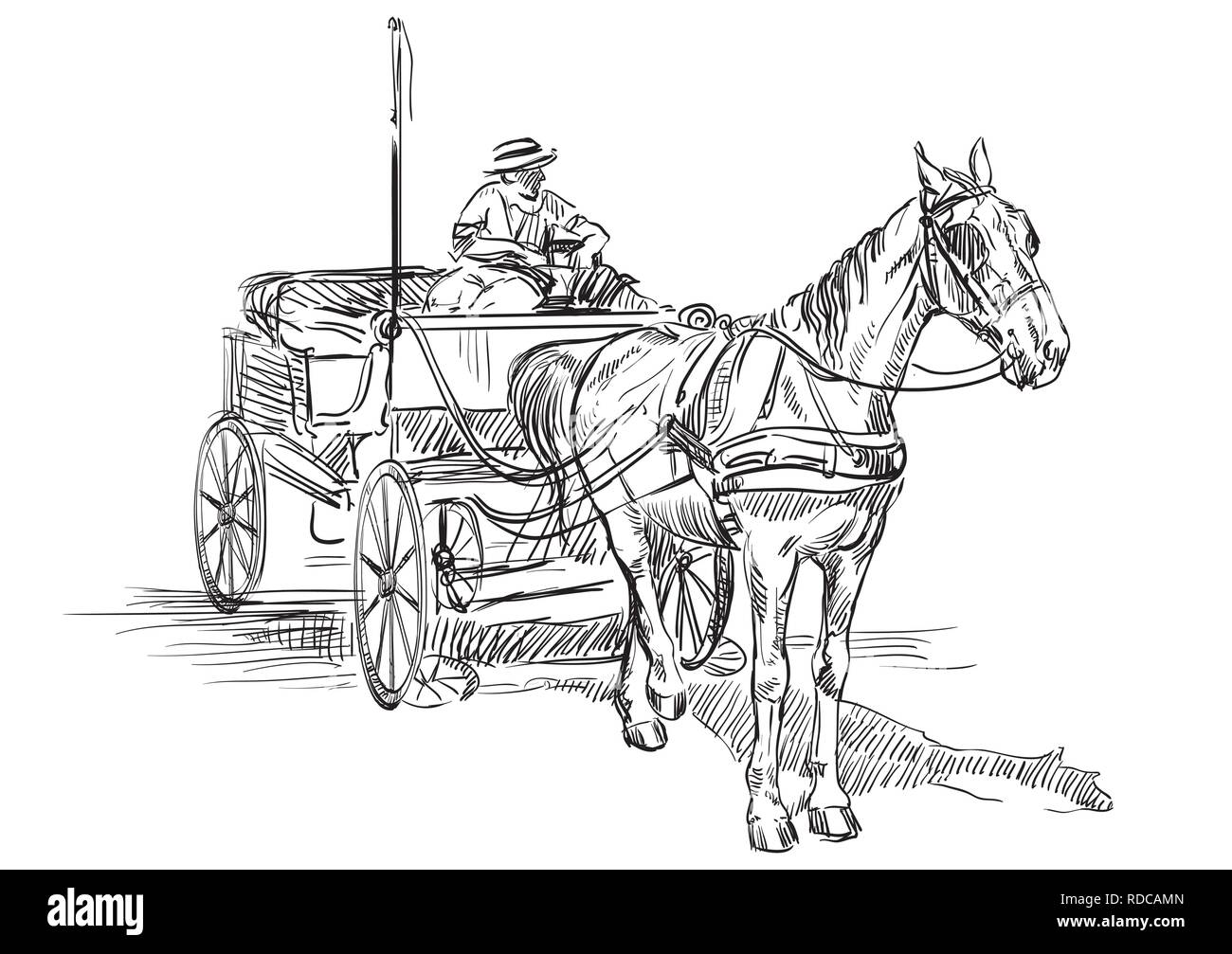 Vector Hand Drawing Illustration Horse Drawn Carriage With Coachman Monochrome Vector Hand Drawing Sketch Illustration In Black Color Isolated On Whi Stock Vector Image Art Alamy