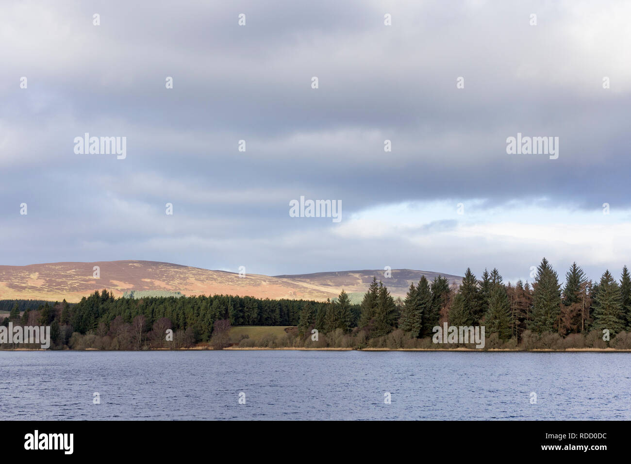 Scenic view on a winter morning of Lintrathen Reservoir. Loch of Lintrathen, Angus, Scotland, UK - Stock Image