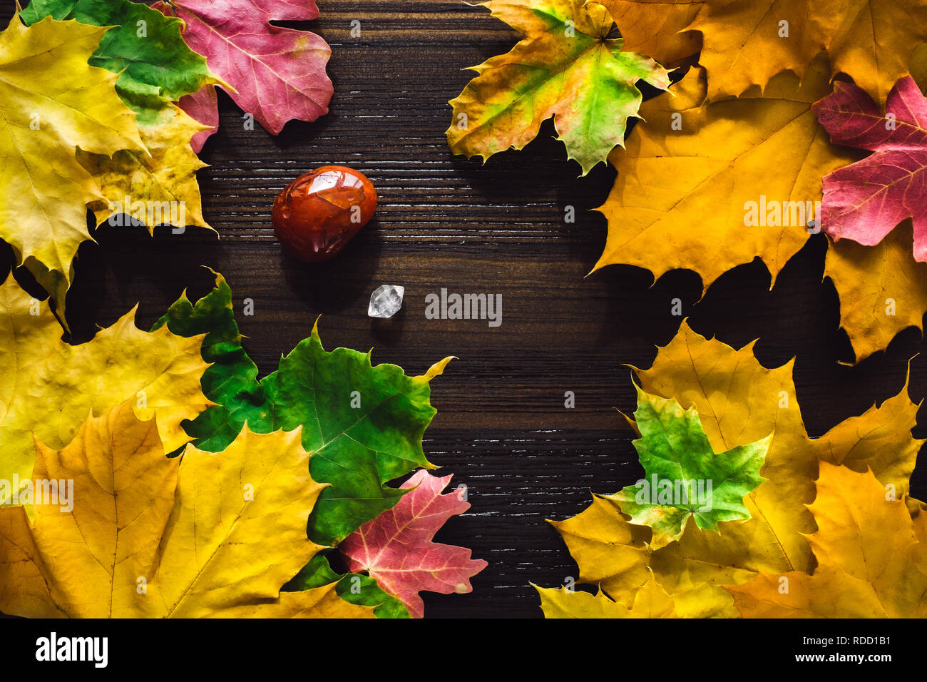 Autumn Leaves with Carnelian Stone and Quartz Points on Dark Wood - Stock Image