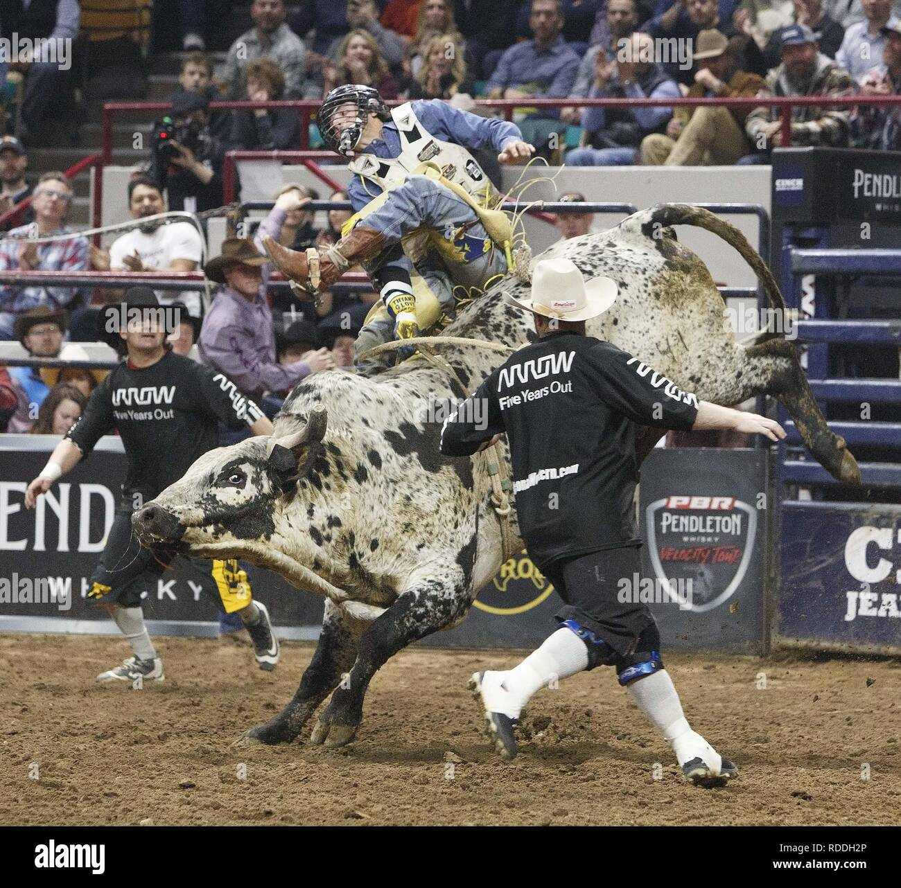 Denver, Colorado, USA  16th Jan, 2019  Bull Rider DALAN