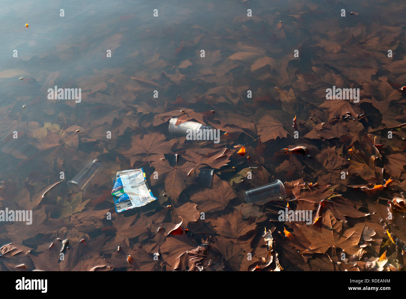 Discarded trash in a pond in Clapham Common, London, UK - Stock Image