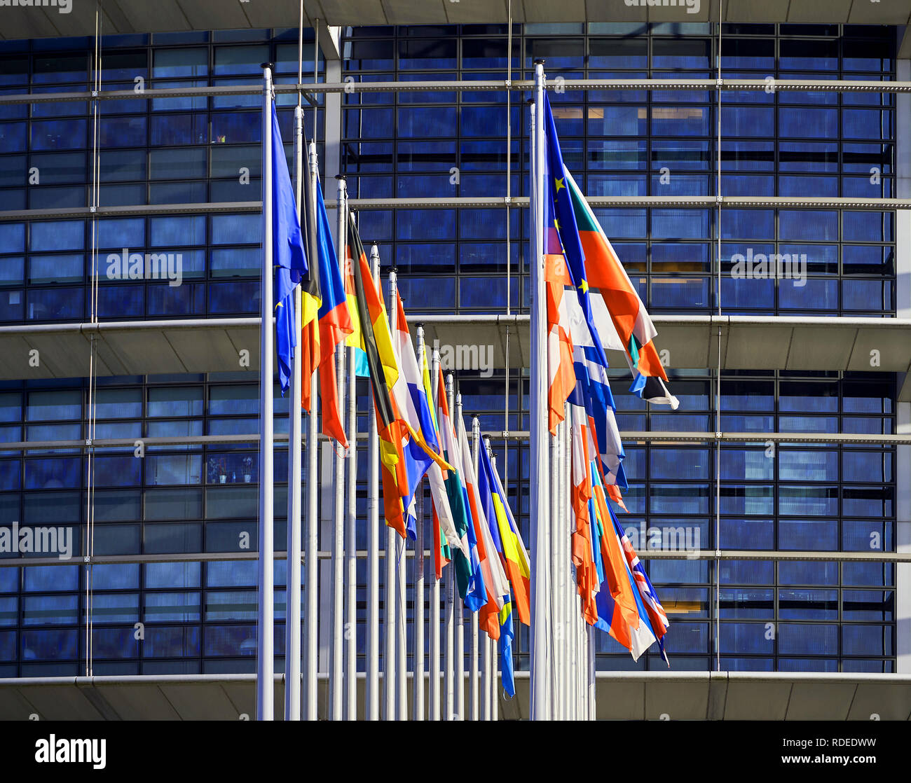 Square image of front view of all members European Union flags waving in front of European Parliament building on a beautiful morning  - Stock Image